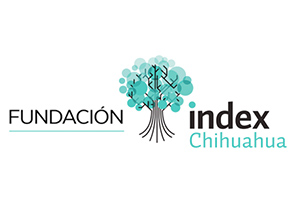 Fundación index